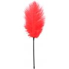 Длинное красное перо-тиклер, 48 см